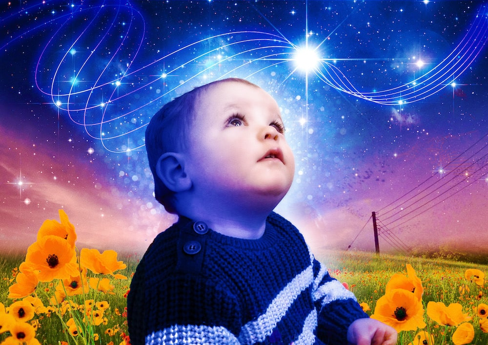 illustration of boy in stripy jumper sitting in a field of flowers looking up at a star